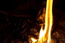 dancing fire 1